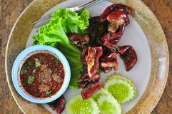 Ψημένα chitterlings χοιρινού κρέατος που εξυπηρετούνται με τη φυτική και πικάντικη σάλτσα στοκ εικόνες