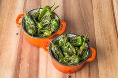 Ψημένα padron πιπέρια στα casserols Στοκ φωτογραφία με δικαίωμα ελεύθερης χρήσης