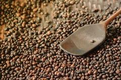 Ψημένα robusta φασόλια καφέ και ξύλινο βατραχοπέδιλο σε ένα αλωνίζοντας καλάθι στοκ φωτογραφία