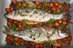 Ψημένα Seabass ψάρια Στοκ Εικόνες