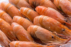 Ψημένες αλατισμένες γαρίδες Στοκ φωτογραφίες με δικαίωμα ελεύθερης χρήσης