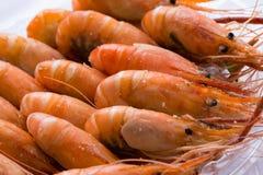 Ψημένες αλατισμένες γαρίδες Στοκ Φωτογραφία