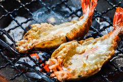 Ψημένες στη σχάρα γαρίδες Ταϊλανδός Στοκ Εικόνες