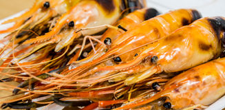 ψημένες στη σχάρα γαρίδες Στοκ Εικόνα