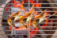 ψημένες στη σχάρα γαρίδες Στοκ Φωτογραφίες