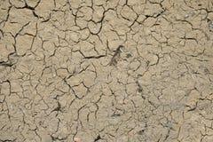 Ψημένη κινηματογράφηση σε πρώτο πλάνο σύστασης λάσπης και αχύρου του σπιτιού λάσπης Στοκ Φωτογραφία