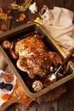 Ψημένη μικρή Τουρκία για την ημέρα των ευχαριστιών εορτασμού Στοκ εικόνα με δικαίωμα ελεύθερης χρήσης
