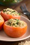 Ψημένη ντομάτα που γεμίζεται με Quinoa και το μανιτάρι Στοκ Εικόνα