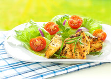 Ψημένη στη σχάρα λωρίδα στηθών κοτόπουλου με τη φρέσκια σαλάτα άνοιξη στοκ εικόνες με δικαίωμα ελεύθερης χρήσης