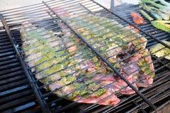 ψημένη σχάρα ψαριών πυρκαγιάς σχαρών Στοκ φωτογραφία με δικαίωμα ελεύθερης χρήσης
