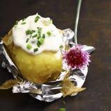 Ψημένη φύλλο αλουμινίου πατάτα με την ξινά κρέμα και τα φρέσκα κρεμμύδια Στοκ Εικόνα