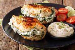 Ψημένη λωρίδα κοτόπουλου που γεμίζεται με το τυρί και το σπανάκι με τη σάλτσα Στοκ Φωτογραφία