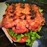 Ψημένοι στη σχάρα ολισθαίνοντες ρυθμιστές χοιρινού κρέατος στοκ εικόνα