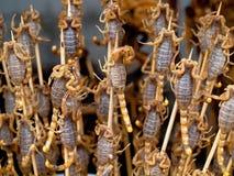 Ψημένοι τηγανισμένοι έντομα και σκορπιοί και ζωύφια ως foo οδών πρόχειρων φαγητών στοκ εικόνα με δικαίωμα ελεύθερης χρήσης