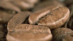 Ψημένος έξοχος μακρο πυροβολισμός φασολιών καφέ φιλμ μικρού μήκους