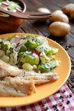 Ψημένος βακαλάος με τη φρέσκια σαλάτα ραδικιών, μαρουλιού και arugula Στοκ Εικόνα