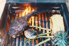 Ψημένος στη σχάρα ανανάς στρατοπέδευσης μπριζολών βόειου κρέατος Στοκ φωτογραφίες με δικαίωμα ελεύθερης χρήσης