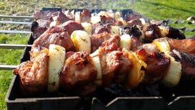Ψημένος στη σχάρα shish kebab, καλοκαίρι, ορεκτικός σε αργή κίνηση πυροβολισμός φιλμ μικρού μήκους