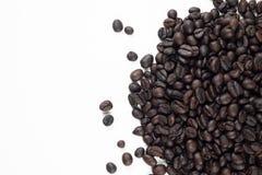 ψημένο απεικόνιση διανυσματικό λευκό καφέ φασολιών ανασκόπησης Στοκ εικόνα με δικαίωμα ελεύθερης χρήσης