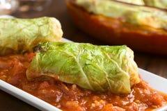 Ψημένο γεμισμένο χορτοφάγος λάχανο κραμπολάχανου Στοκ εικόνες με δικαίωμα ελεύθερης χρήσης