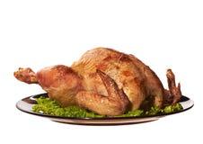 Ψημένο κοτόπουλο Στοκ Εικόνα