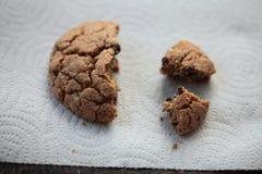 ψημένο μπισκότο πρόσφατα Στοκ Εικόνα