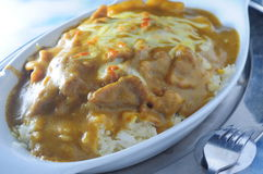 Ψημένο ρύζι χοιρινού κρέατος κάρρυ Στοκ φωτογραφία με δικαίωμα ελεύθερης χρήσης