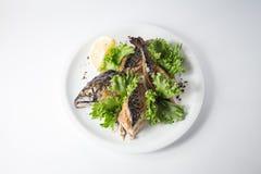 Ψημένο σκουμπρί με την πράσινη σαλάτα και λεμόνι στο άσπρο πιάτο στοκ εικόνες