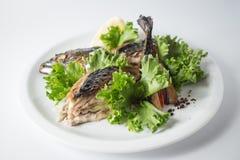 Ψημένο σκουμπρί με την πράσινη σαλάτα και λεμόνι στο άσπρο πιάτο στοκ φωτογραφία με δικαίωμα ελεύθερης χρήσης