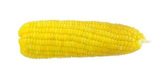 Ψημένο στη σχάρα καλαμπόκι σε ένα άσπρο υπόβαθρο στοκ φωτογραφία με δικαίωμα ελεύθερης χρήσης