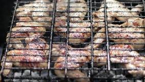 Ψημένο στη σχάρα κοτόπουλο στη σχάρα απόθεμα βίντεο
