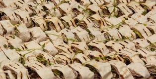 Ψημένο στη σχάρα κρέας pita με την κινηματογράφηση σε πρώτο πλάνο πρασίνων στοκ εικόνα