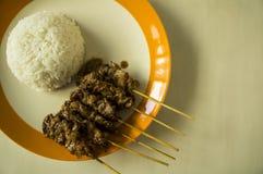 Ψημένο στη σχάρα πιάτο ρυζιού ραβδιών χοιρινού κρέατος σχαρών χοιρινού κρέατος Στοκ φωτογραφίες με δικαίωμα ελεύθερης χρήσης