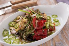 Ψημένο στη σχάρα σαλάτα μαγειρευμένο λαχανικά χορτοφάγο πιάτο Στοκ Φωτογραφίες