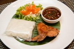 Ψημένο στη σχάρα φτερό κοτόπουλου και κολλώδες ρύζι στοκ φωτογραφίες με δικαίωμα ελεύθερης χρήσης
