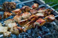 Ψημένο στη σχάρα χοιρινό κρέας αρμένικα Στοκ εικόνα με δικαίωμα ελεύθερης χρήσης