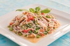 Ψημένο στη σχάρα χοιρινό κρέας με την ταϊλανδική σαλάτα νουντλς ρυζιού στοκ εικόνες