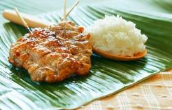 Ψημένο στη σχάρα χοιρινό κρέας με το κολλώδες ρύζι Στοκ φωτογραφίες με δικαίωμα ελεύθερης χρήσης