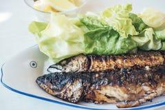 ψημένο στη σχάρα ψάρια πιάτο στοκ φωτογραφίες