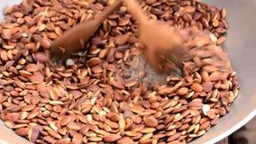 Ψημένο φασόλι σπόρου malayana Irvingia απόθεμα βίντεο