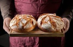 ψημένο ψωμί πρόσφατα στοκ εικόνα