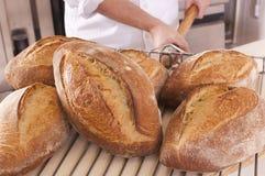 ψημένο ψωμί φρέσκο Στοκ φωτογραφίες με δικαίωμα ελεύθερης χρήσης