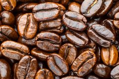 Ψημένο arabica καφέ Στοκ εικόνες με δικαίωμα ελεύθερης χρήσης