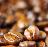 Ψημένο arabica. Κινηματογράφηση σε πρώτο πλάνο των φασολιών καφέ Στοκ Εικόνα
