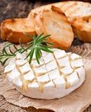 Ψημένο Camembert τυρί με το δεντρολίβανο και τη φρυγανιά Στοκ Φωτογραφία