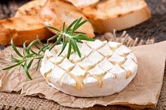 Ψημένο Camembert τυρί με το δεντρολίβανο και τη φρυγανιά Στοκ Εικόνες