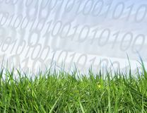 ψηφιακή ανάπτυξη ελεύθερη απεικόνιση δικαιώματος