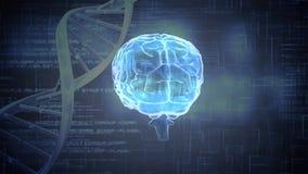 Ψηφιακή ζωτικότητα ενός εγκεφάλου απεικόνιση αποθεμάτων