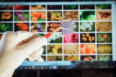 ψηφιακή μνήμη καρτών Στοκ Φωτογραφία