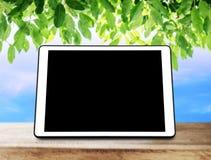 Ψηφιακή ταμπλέτα στον ξύλινο πίνακα με τα πράσινα φύλλα και το υπόβαθρο μπλε ουρανού Στοκ εικόνα με δικαίωμα ελεύθερης χρήσης